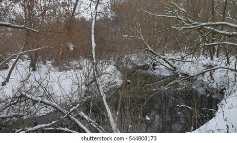 creek in the woods nature winter flowing water, landscape small river in the snow