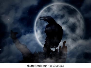 Creepy black crow croaking on old tree under full moon at night