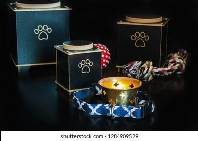 Cremation urn for pets. black background