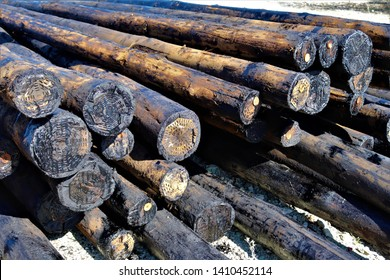 Creosote treated wood that will be used as utility poles.This treatment protects the wood from the elements and pests such as termites.