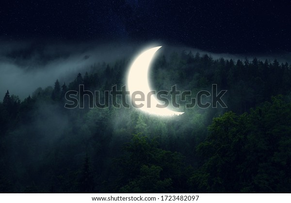 Crescent moon in the forest. Dark night with fog