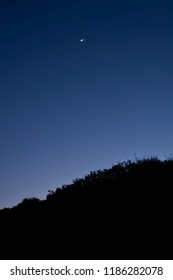 A crescent moon hangs in a cobalt blue sky above silhouetted trees on Cumberland Island, Georgia.