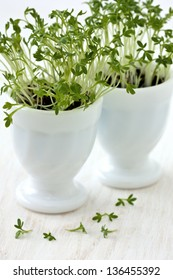 cress in egg cups on a white wooden board