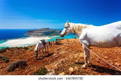 Crete, Greece - April 25 2018: Donkey taxi near Balos Beach, Gramvoussa Peninsula, Balos Bay, Gramvousa Peninsula, Crete, Greek Islands, Greece Europe