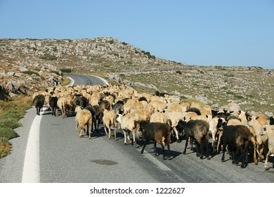 Crete / Greek traffic jam