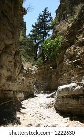 Crete / Imbros ravine