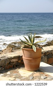 Crete / Terace by the sea