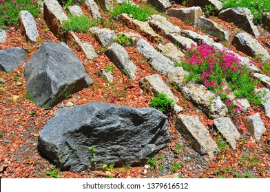 Crevice Garden in Spring