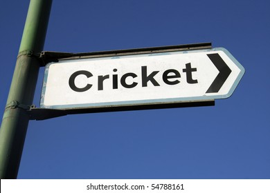 To the cricket
