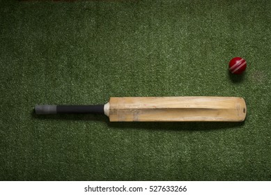 Cricket ball and bat on lawn with copy space