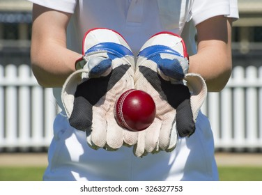 Cricket ball in keepers gloves