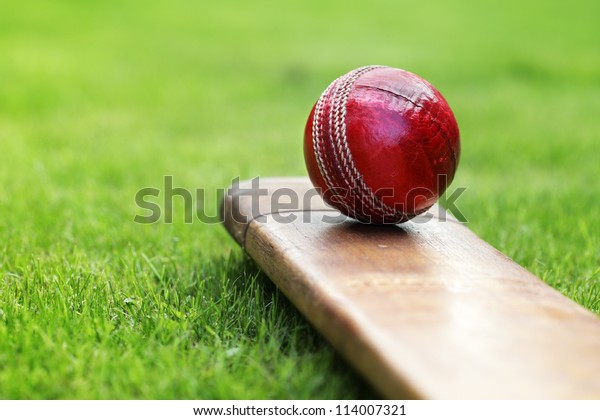 Крикетный мяч покоится на битой крикета на зеленой траве поля для крикета