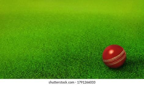 cricket ball resting on green grass pitch, cricket ground, ipl, twenty twenty , cricket world cup