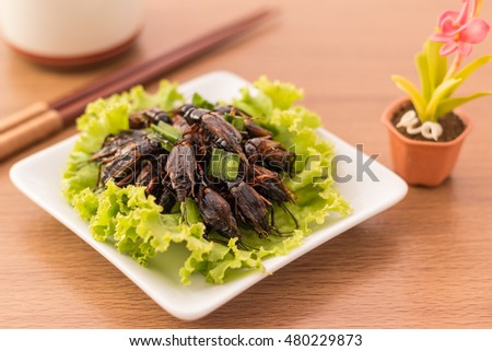 Cricket insect crispy with pandan after fried and add a light coating of sauce and garnish Thai pepper powder on white dish with chopsticks, tea, on wooden background, Select focus, Horizontal image