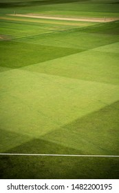 Cricket pitch with stumps and boundary rope