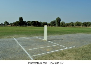 Cricket pitch with wicket and stumps surrounding green trees.