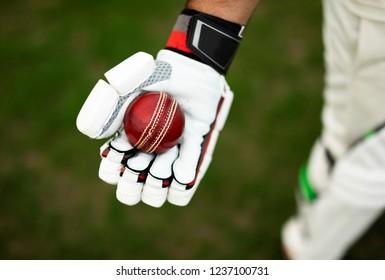 Cricket player holding a cricket ball