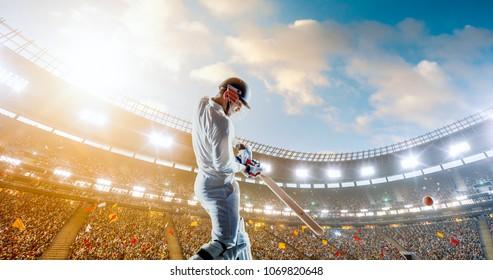 Cricket player on a professional stadium