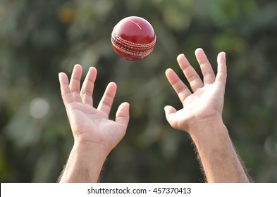 Cricket player tending to catch ball.