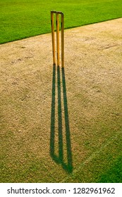 Cricket stumps casting a shadow on the green pitch