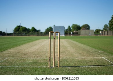 Cricket stumps in the summer