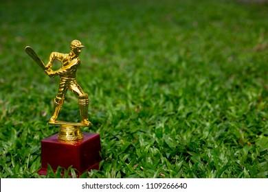 Cricket trophy in a grass field