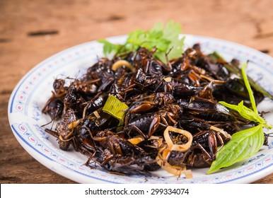 Cricketsfried, beetles fried ,Orhrn Thailand,thai food