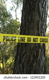 Crime scene in the forest: Yellow police line do not cross tape