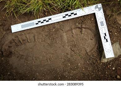 Crime scene investigation - traces of criminal