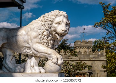 Crimea - May 20, 2016: Marble statue of a lion at the Vorontsov Palace in Crimea, Russia. Classical marble lion sculpture outdoor. Beautiful view of detail of the famous Crimea landmark in summer.
