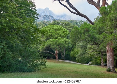 Crimea. Vorontsov Palace. Meadows and paths of the Upper Park. View of Ai-Petri Mountain