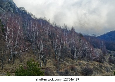 Crimean mountains in January