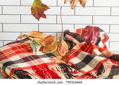 Crimson fallen leaves on a plaid warm blanket against a white brick wall.
