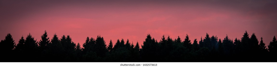 crimson-red sunset seen from behind the trees. sunset making its way through the trunks of a pine tree. beautiful color. screensaver for your desktop. background texture. desktop Wallpapers