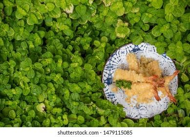 Crispy fried shrimp tempura, Shrimp Tempura, Japanese national food, delicious and healthy.