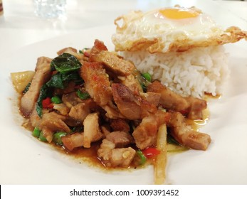 crispy pork fried with basil, chilli and garlic served with rice and Fried egg
