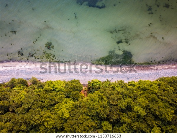Cristal clear water, beach and trees from above, Rügen, Germany