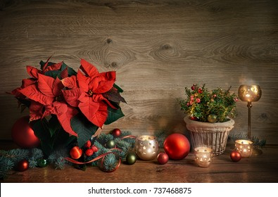 Cristmas still life with poinsettia, gaultheria and decorations on wooden table.. Merry Christmas! Toned image, space for your text