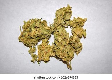 Critical - Cannabis