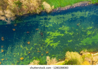 Croatia, Dobra river from air, top down view from drone, Karlovac county, green surface of clear water in autumn, beautiful nature