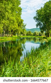 Croatia, Gacka river flowing between trees and fields, summer view, Lika region, beautiful nature