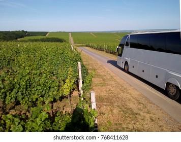 CROATIA - JUNE 15, 2017: Bus passing through a vineyard in the  Slavonia Region, one of Croatia's major winemaking areas.