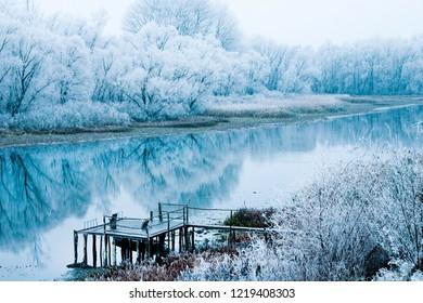 Croatia, nature park Lonjsko polje, reflection of trees under snow on lake in winter