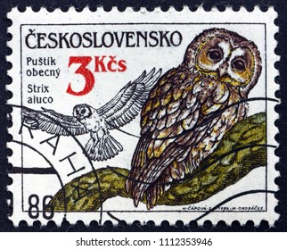 CROATIA ZAGREB, 19 MAY 2018: a stamp printed in Czechoslovakia shows Tawny owl, Strix Aluco, is a Nocturnal Bird of Prey, circa 1986