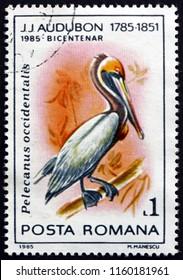 CROATIA ZAGREB, 28 JUNE 2018: a stamp printed in Romania shows Brown Pelican, Pelecanus Occidentalis, is a North American Bird of the Pelican Family, circa 1985