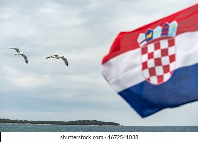 Croatian flag blowing in the wind and seagulls. Brijuni islands