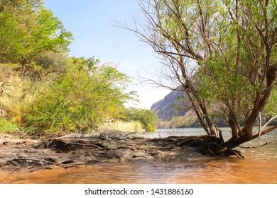 Crocodile resting on a sandy coast of Grijalva river (Rio Grijalva) inside Sumidero Canyon (Canyon del Sumidero) near to Tuxtla Gutierrez, Chiapas, Mexico, North America