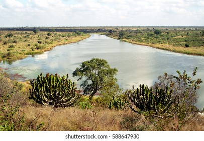 Crocodile River, Kruger National Park, South African Republic