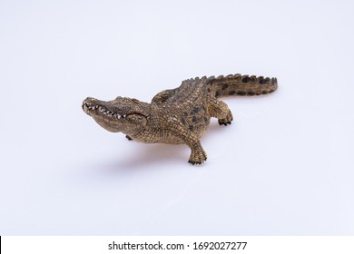 crocodile toy isolated in front a white background