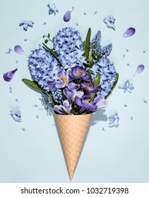 Crocus and Hyacinth muscari flower in waffle cone